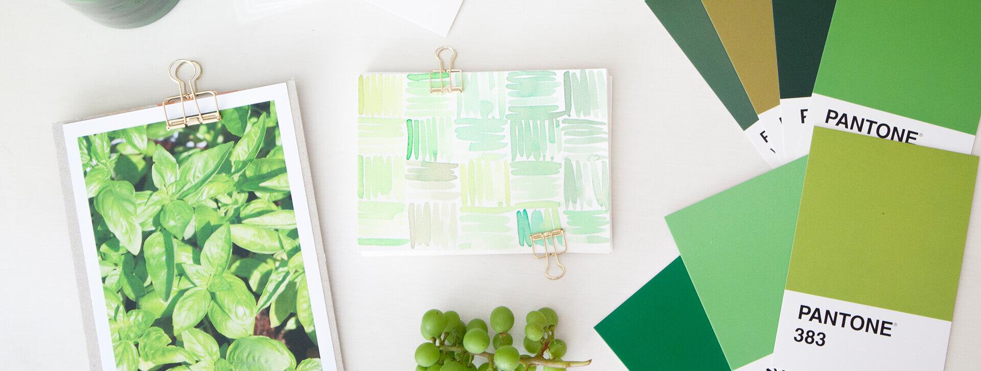 Grün als Brandingfarbe